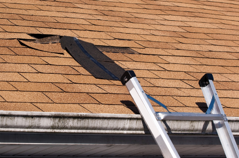 Missing Asphalt Roofing Shingles