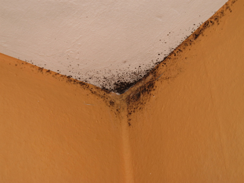The Serious Nature of Roof Leak Repair